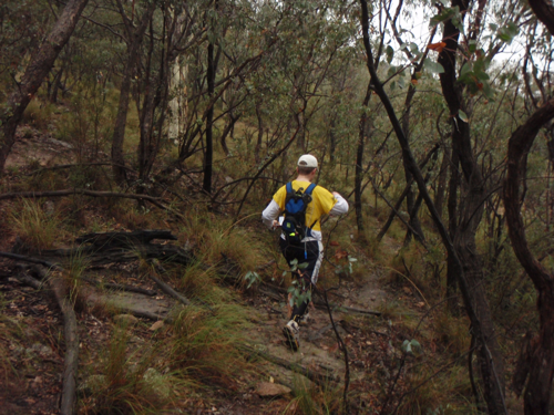 Scrub on Mt Wanniassa