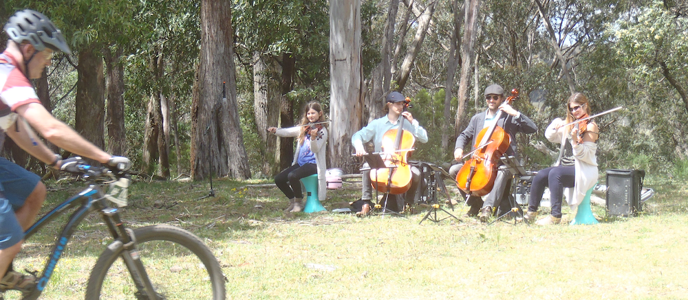 String quartet playing in a mountain bike race.