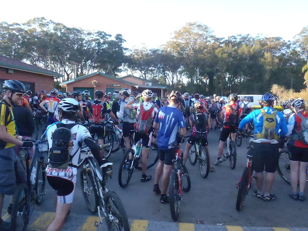 Mountain bikers at the start of a race